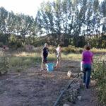 Vecinos-trabajo-comunitario-huerto-Molina-de-Aragon-Fundacion-Cepaim