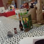taller-cosmeticos-cepaim-almeria-2
