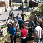 Cultivo-ecologico-Formacion-Fundacion-Cepaim-en-La-Estacion-Murcia